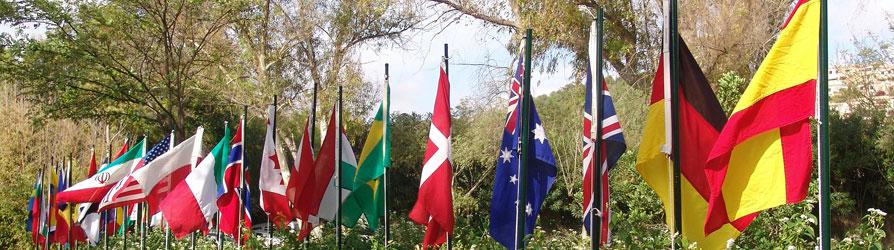 Studieren im ausland internationale erfahrungen sammeln for Studieren im ausland